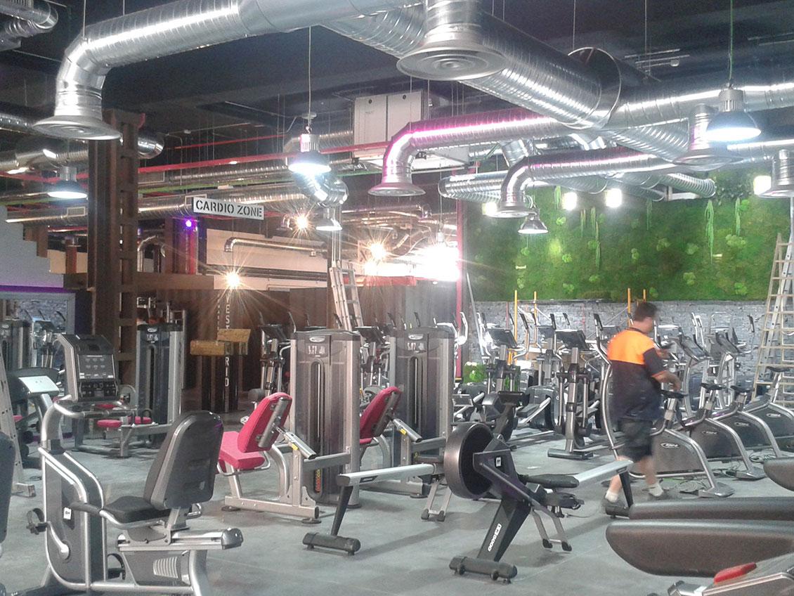 hi_fitness_1